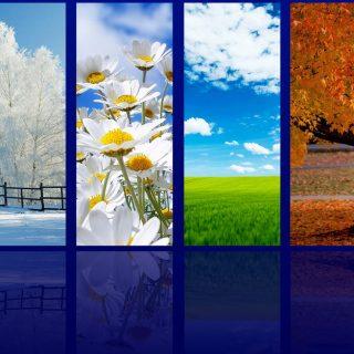 Времена года зима весна лето осень (13)