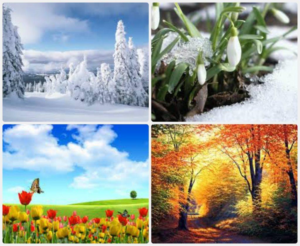 Картинки природа в разное время года