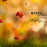 Встречаем осень с улыбкой: советы по уничтожению хандры и тоски