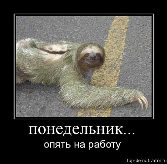 В понедельник на работу картинки приколы004