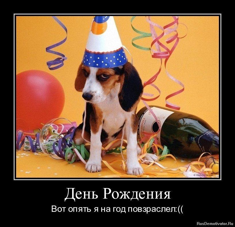 Демотиваторы на день рождения девушки (12)