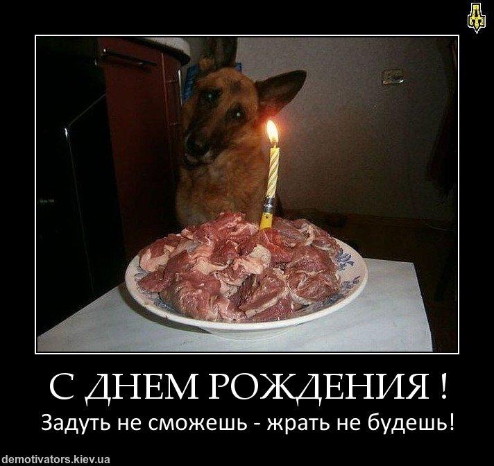 Демотиваторы на день рождения девушки (18)