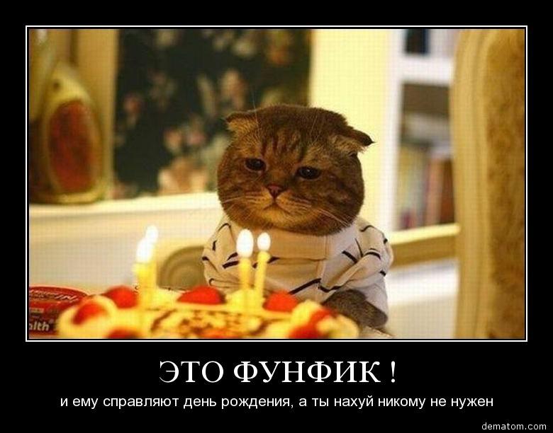 Демотиваторы на день рождения девушки (19)