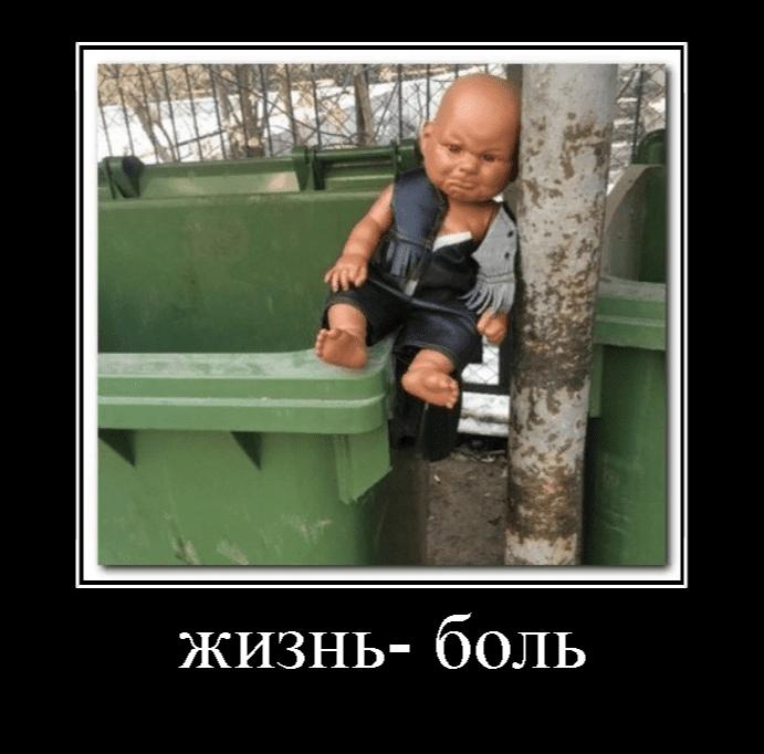 Демотиваторы прикольные картинки за 2019 год - подборка (16)