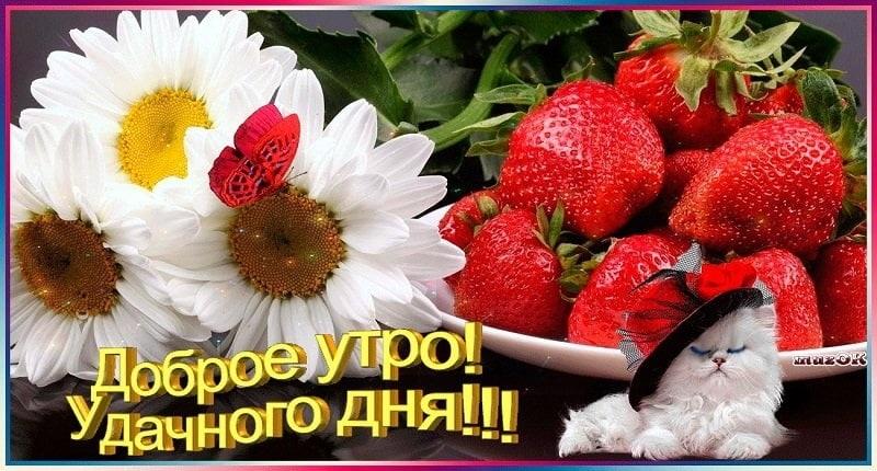 Детские картинки с добрым утром и хорошего настроения009