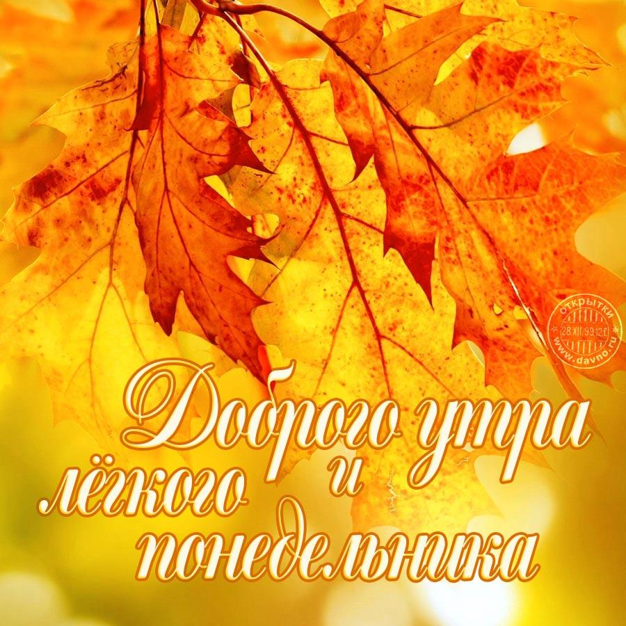 Доброго осеннего утра и хорошего настроения на весь день (1)