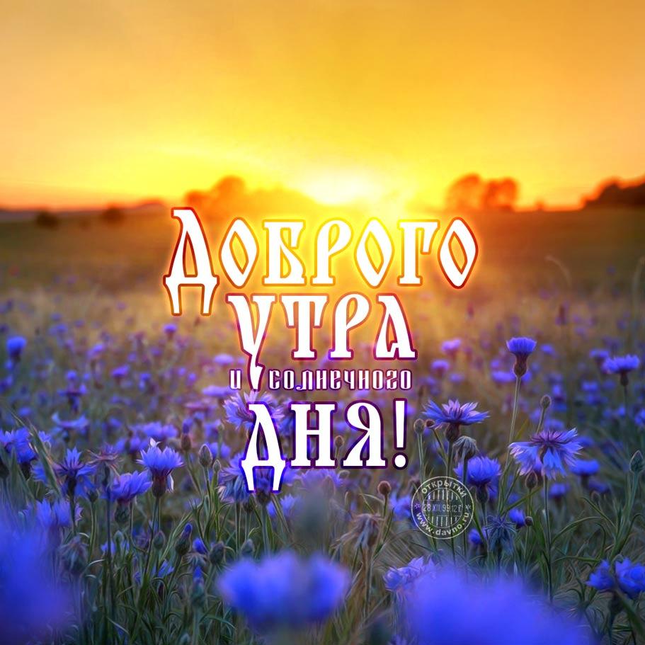 Доброго осеннего утра и хорошего настроения на весь день (11)