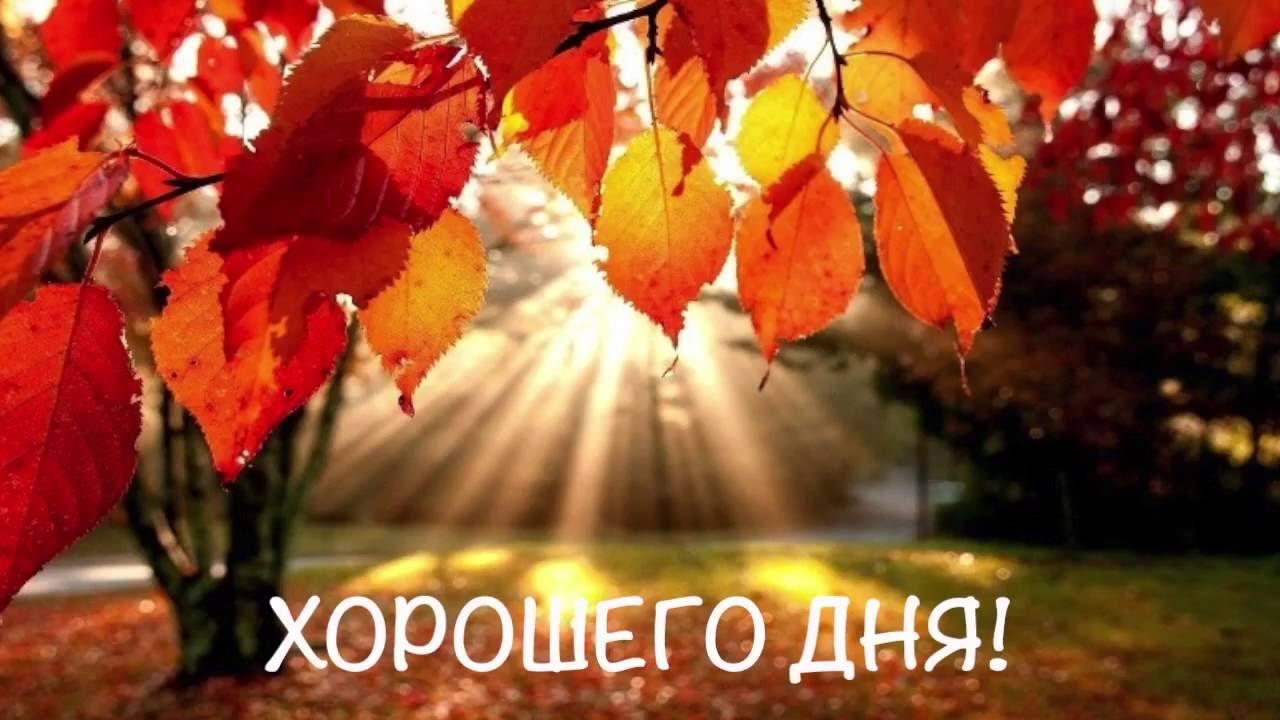 Доброго осеннего утра и хорошего настроения на весь день (12)