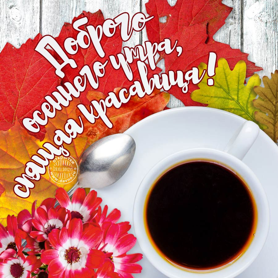 Доброго осеннего утра и хорошего настроения на весь день (3)