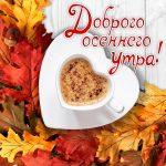 Доброго осеннего утра и хорошего настроения на весь день