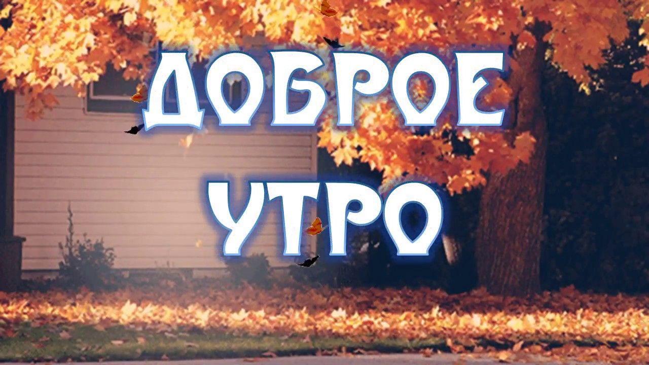 Доброго осеннего утра и хорошего настроения на весь день (9)