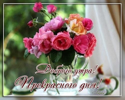 Доброе утро друзья розы красивые открытки и гифы анимированные011