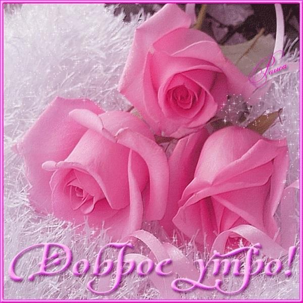 Доброе утро друзья розы красивые открытки и гифы анимированные018