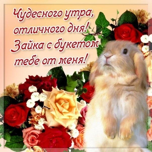 Доброе утро картинки красивые со стихами про любовь016