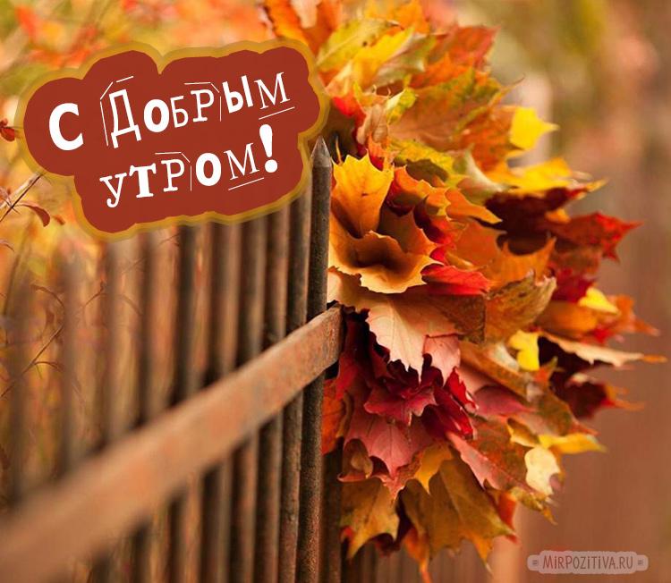 Доброе утро осень - очень красивые открытки (22)