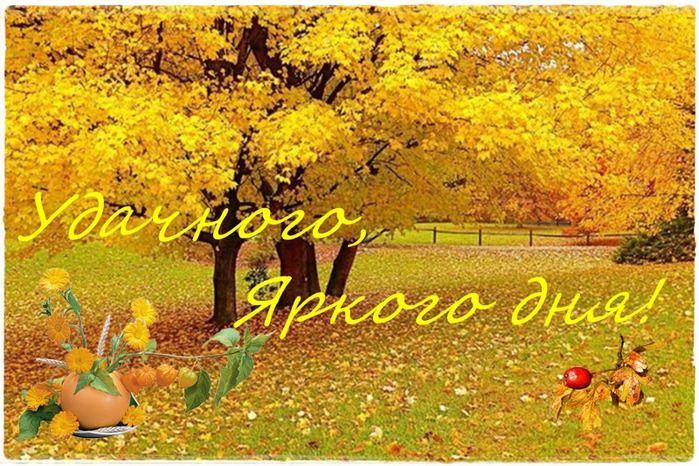Доброе утро осень - очень красивые открытки (7)
