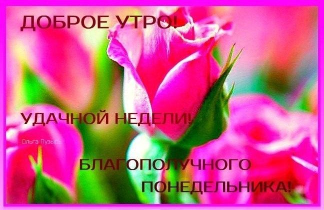 Доброе утро понедельника и удачной недели004