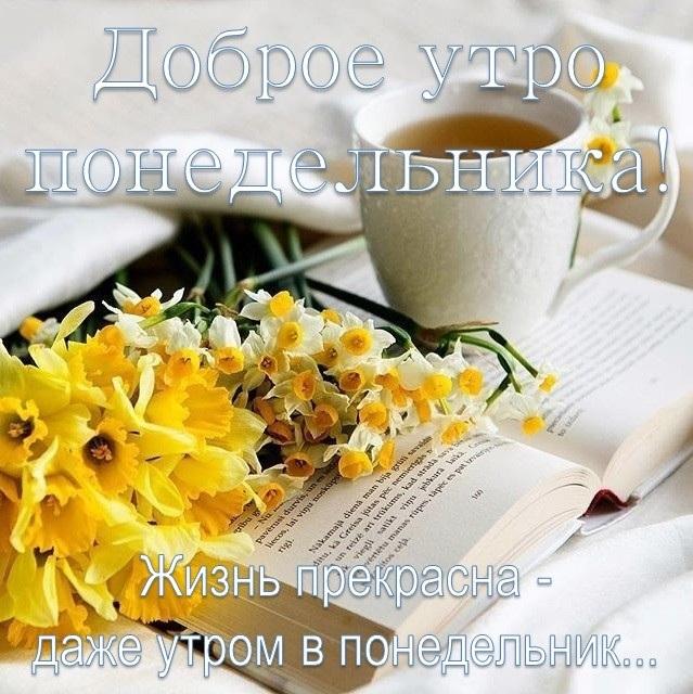 Доброе утро понедельника картинки красивые с надписью001