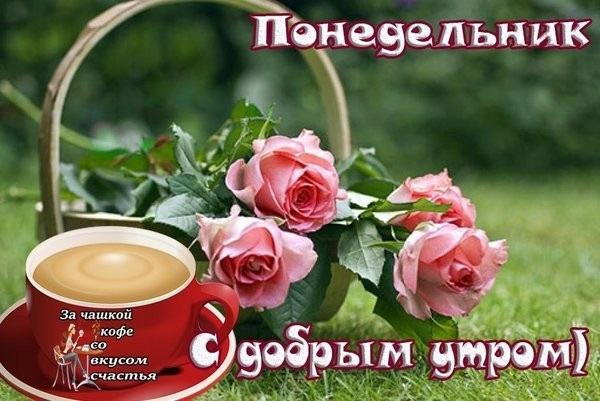Доброе утро понедельника картинки красивые с надписью018