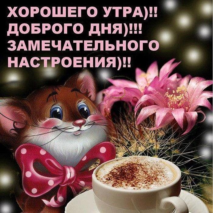 Доброе утро, хорошего дня и прекрасного настроения девушке001
