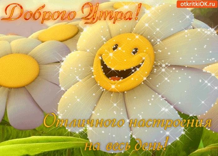 Доброе утро, хорошего дня и прекрасного настроения девушке014