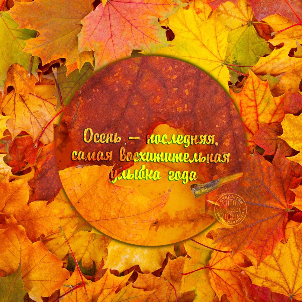 Доброй ночи осенью красивые открытки и картинки (13)