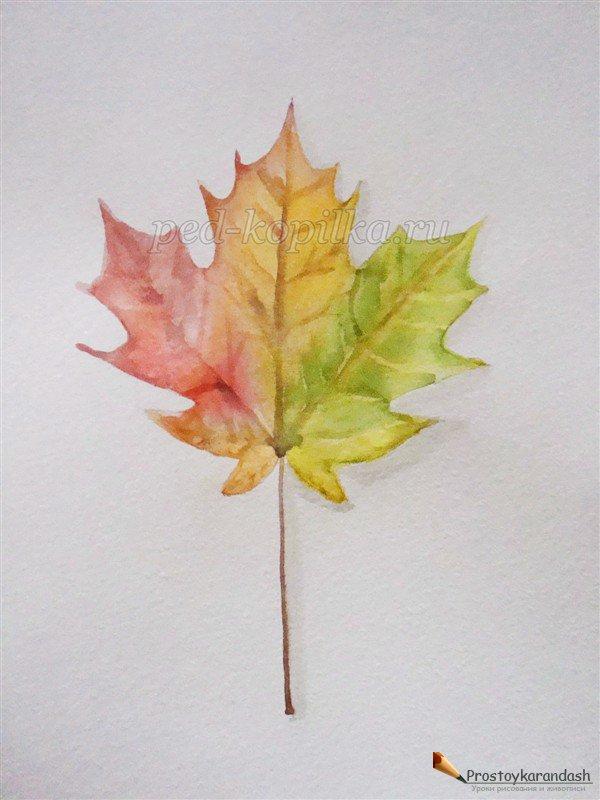 Как нарисовать вазу с осенними листьями поэтапно - подборка (30)
