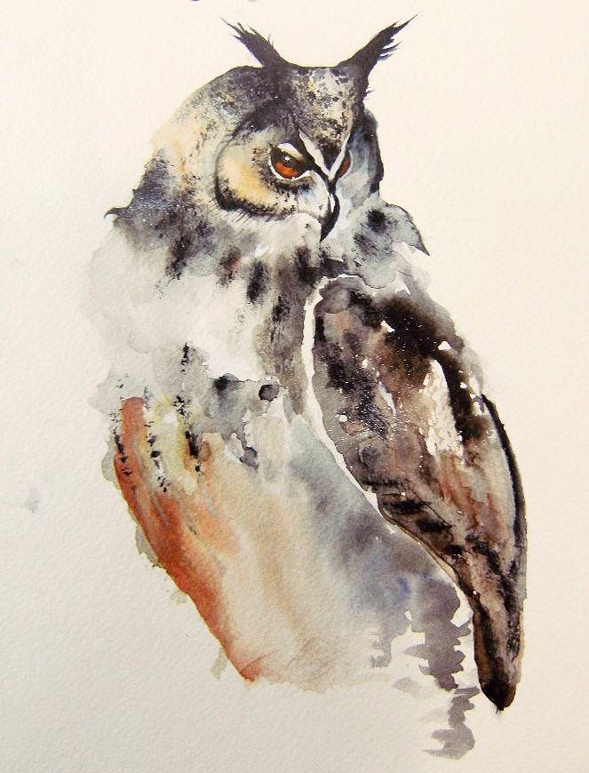 Как раскрасить гуашью сову - идеи и картинки (11)