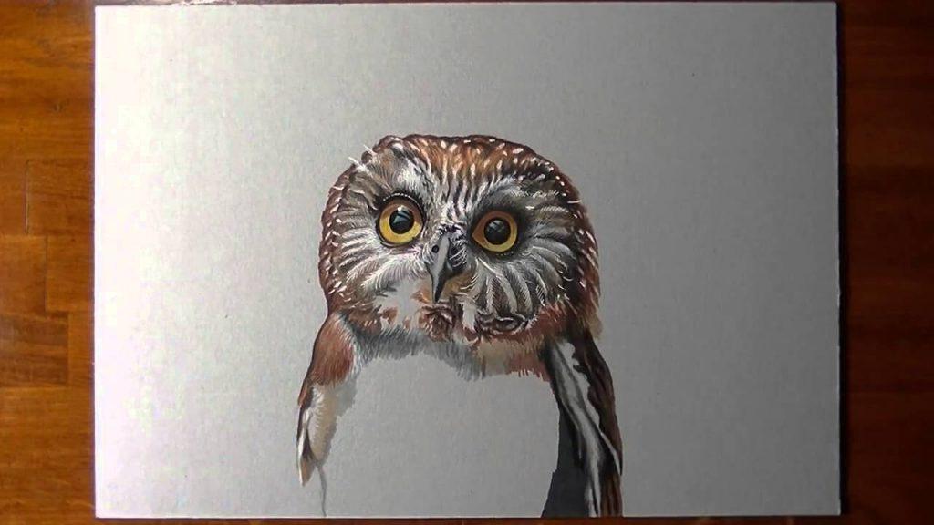 Как раскрасить гуашью сову - идеи и картинки (14)