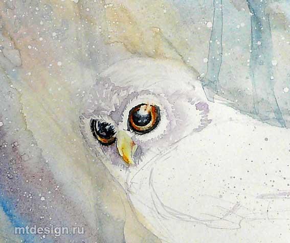 Как раскрасить гуашью сову - идеи и картинки (18)