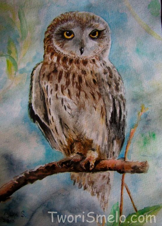 Как раскрасить гуашью сову - идеи и картинки (2)