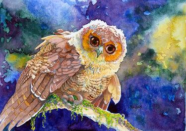 Как раскрасить гуашью сову - идеи и картинки (20)