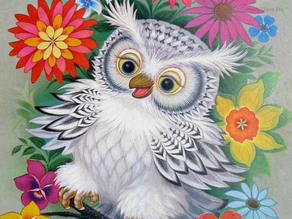 Как раскрасить гуашью сову - идеи и картинки (25)