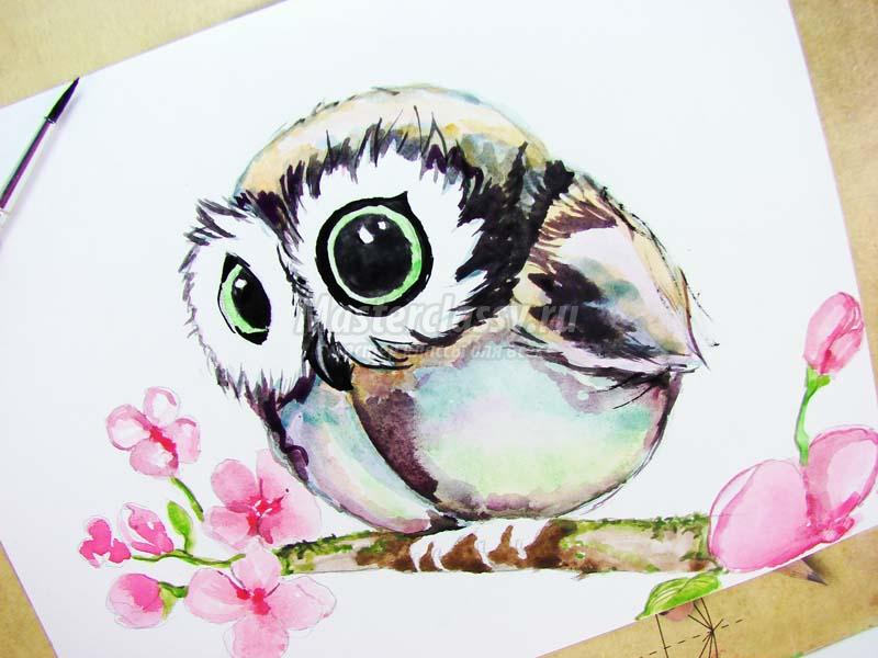 Как раскрасить гуашью сову - идеи и картинки (30)