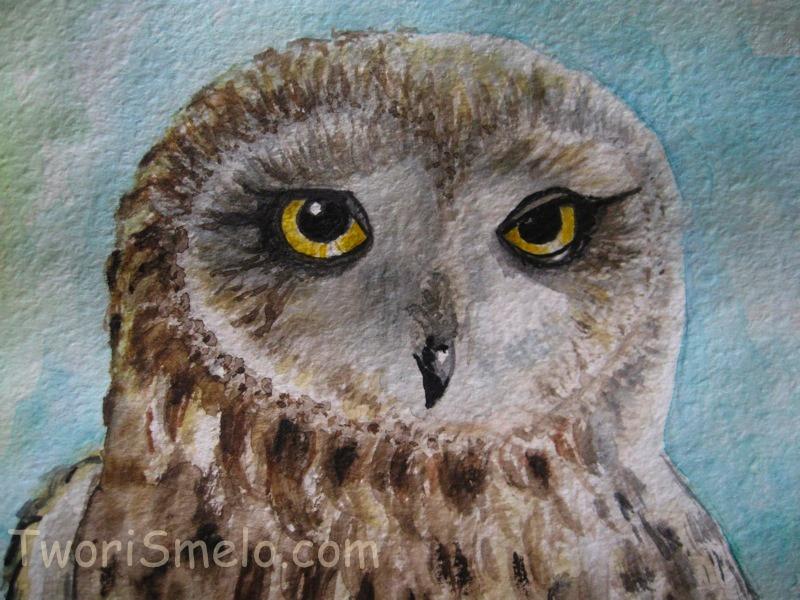 Как раскрасить гуашью сову - идеи и картинки (31)