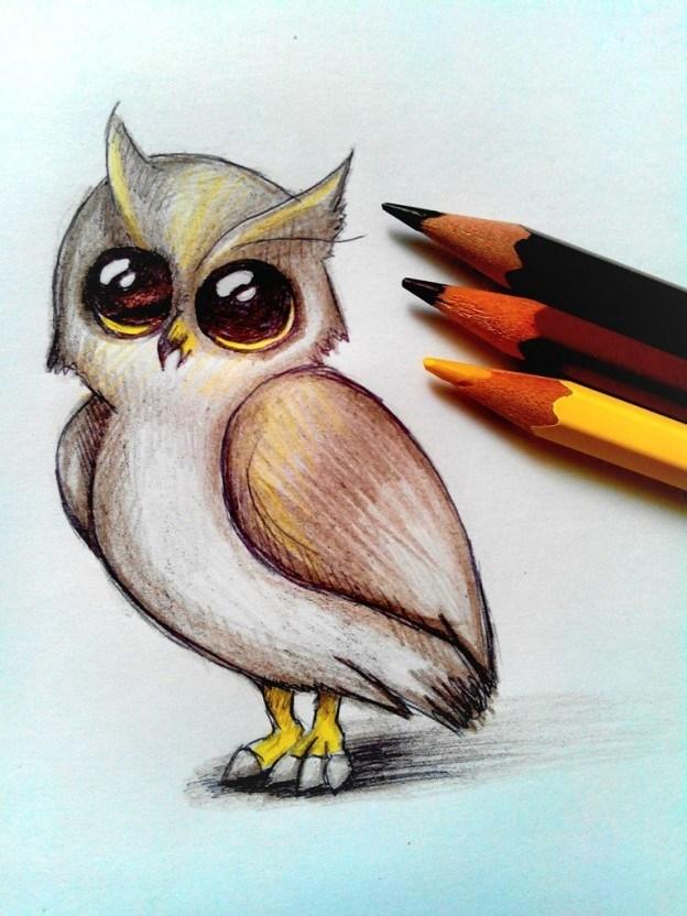 Картинки совы срисовывать