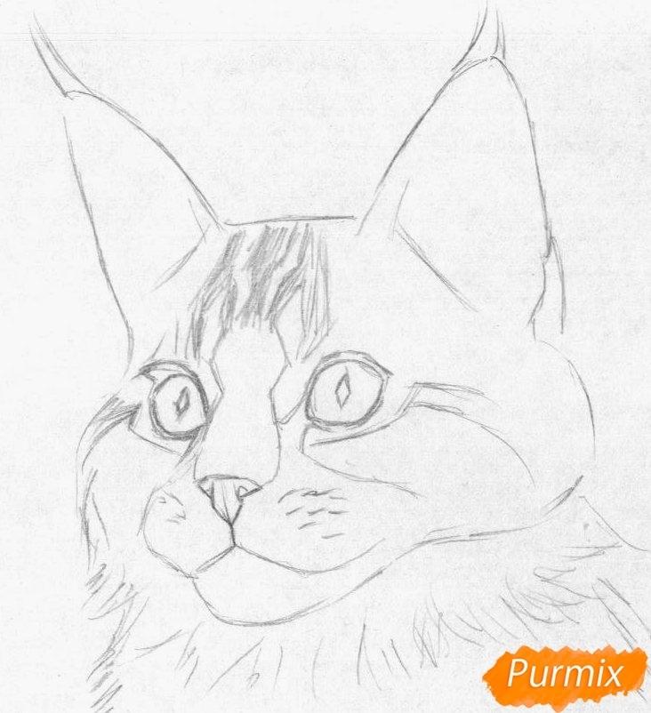 Как рисовать кунов011
