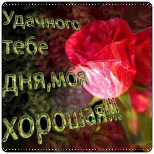 Картинка с добрым утром и удачного дня девушке003