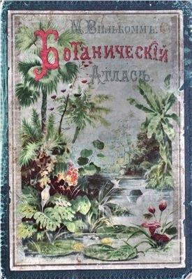 Картинки ботанический атлас растений005