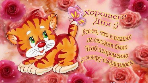 Картинки доброго воскресенья и хорошего настроения007