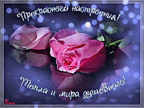 Картинки доброго воскресенья и хорошего настроения009