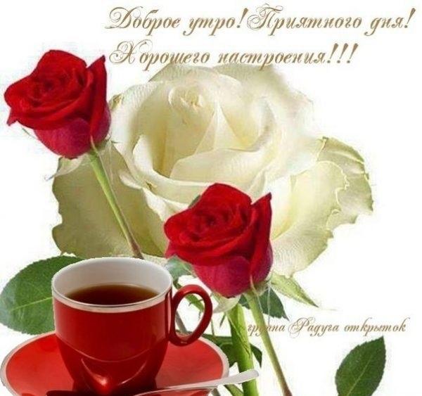 Картинки доброго субботнего утра и хорошего дня005