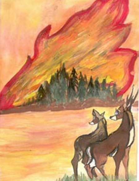 Картинки и рисунки на тему пожар в лесу003