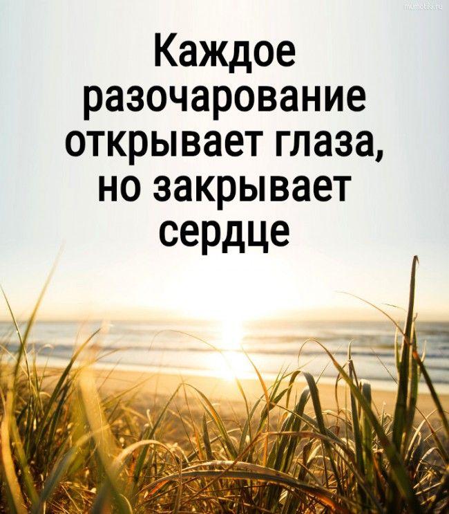 Картинки мудрость жизни с надписью - 20 фото (25)