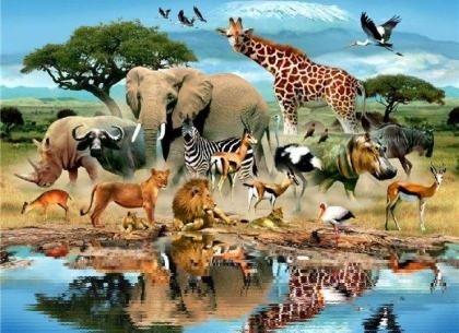 Картинки на всемирный день животных 4 октября013