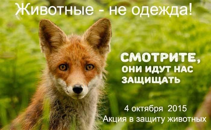 Картинки на всемирный день животных 4 октября015