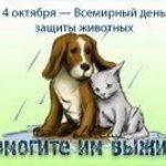 Картинки на всемирный день животных 4 октября
