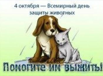Картинки на всемирный день животных 4 октября019