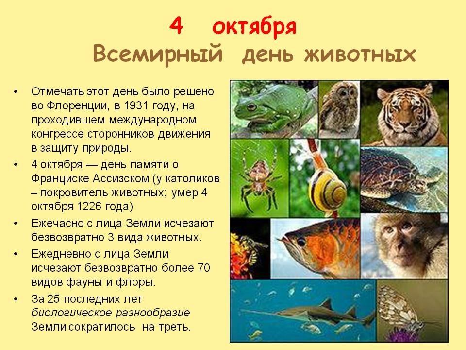 Картинки на всемирный день животных 4 октября020