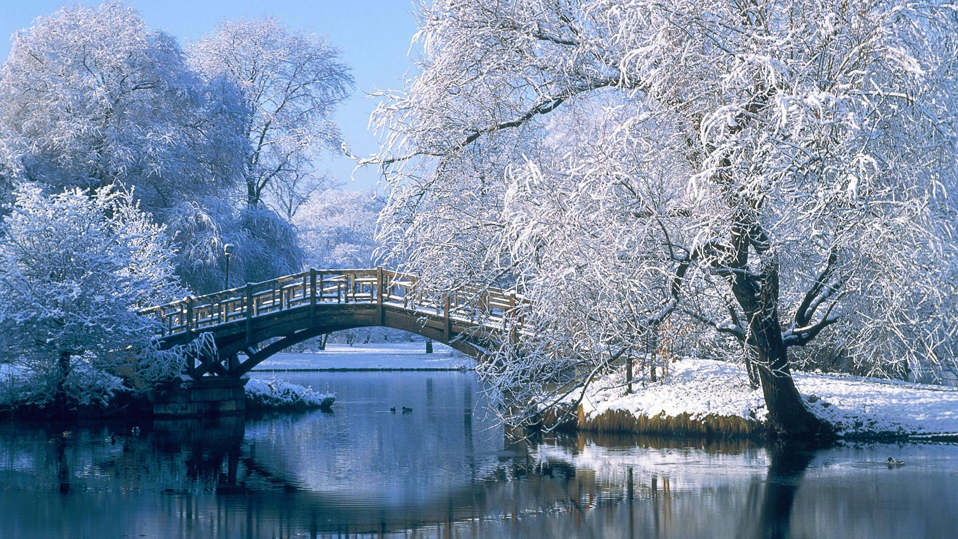 Природа зимой картинки красивые на рабочий стол